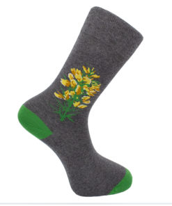 Calcetines Toxo gris
