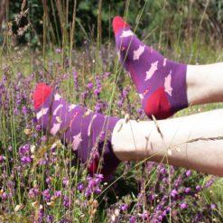 Calcetines tobilleros Cerditos