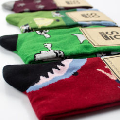 Pack calcetines infantiles